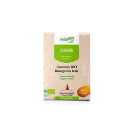 Herbalgem Gommes BIO Cassis - x24