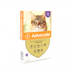 Bayer Advocate Gros Chats - 3 Pipettes