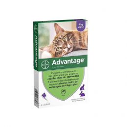 Bayer Advantage 80 pour chat et lapin - 6 Pipettes