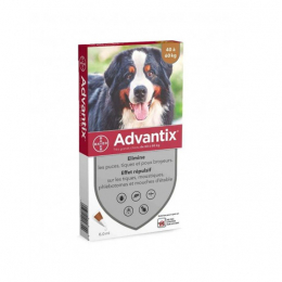 Bayer Advantix Très grand chien - 6 Pipettes
