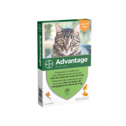 Bayer Advantage 40 pour chat et lapin - 4 Pipettes
