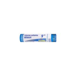Boiron Calcarea Carbonica Ostrearum 9CH Tube - 4g