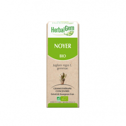 Noyer BIO - 30ml