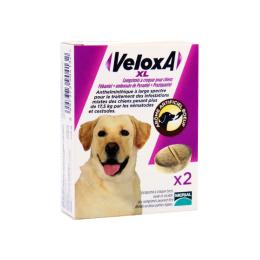 Veloxa XL Comprimés à croquer - x2