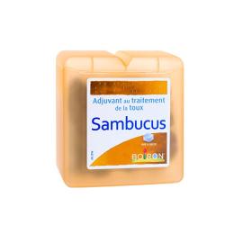 Boiron Pate de réglisse au Sambucus - 70g
