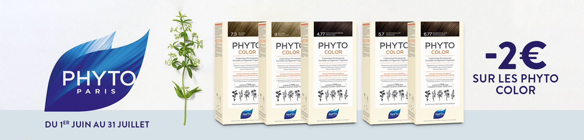 Promotion Phyto color