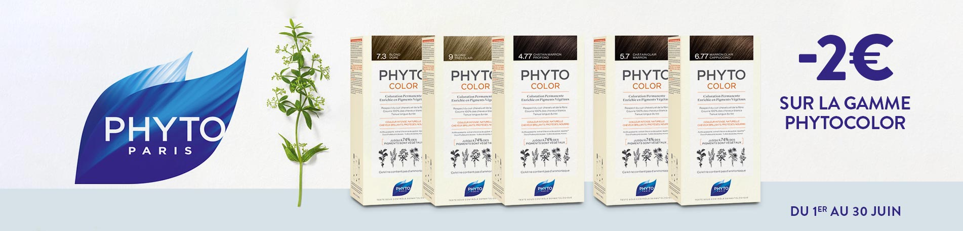 Promotion Phytocolor